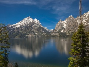 Planning Your Trip To Grand Teton National Park