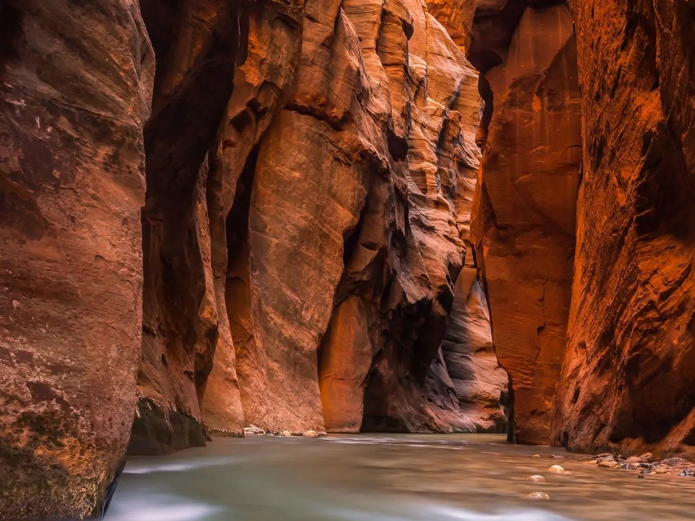 Planning Your Trip To Zion National Park