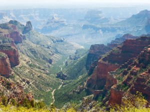 Roosevelt Point Grand Canyon North Rim