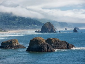 The Ultimate Guide To Haystack Rock