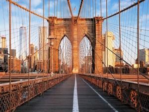 Brooklyn Bridge | New York City