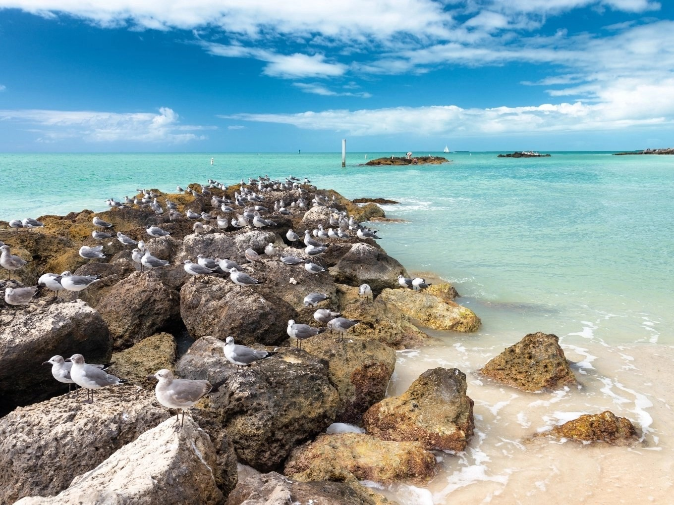 Fort Zachary Taylor Historic State Park | Key West