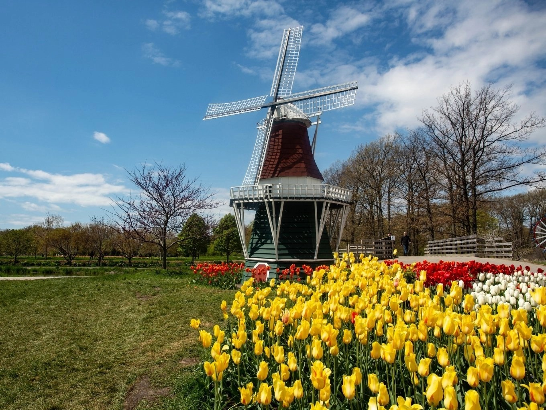 Holland | West Michigan