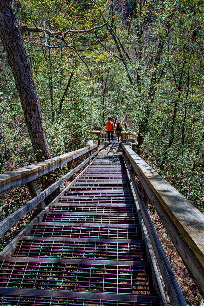 Hiking Tallulah Gorge: Hiking the stairs