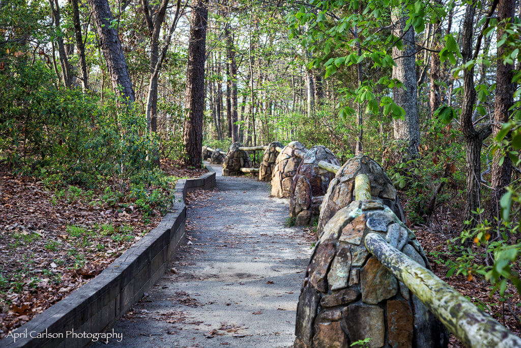 Visiting Cloudland Canyon State Park: Path Around Canyon