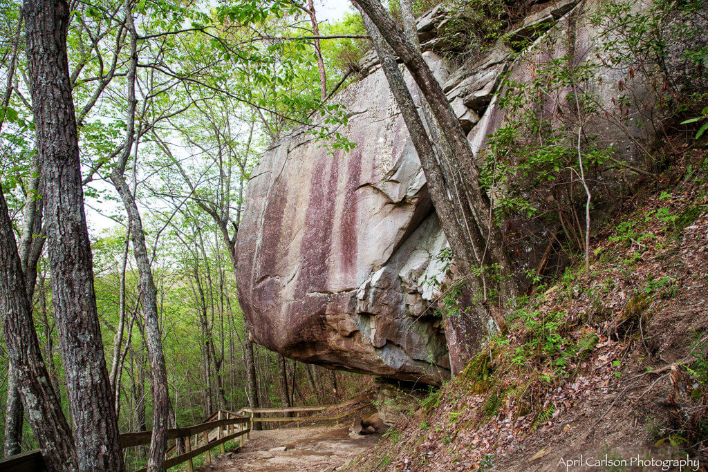 Visiting Cloudland Canyon State Park: Large Boulder on Trail