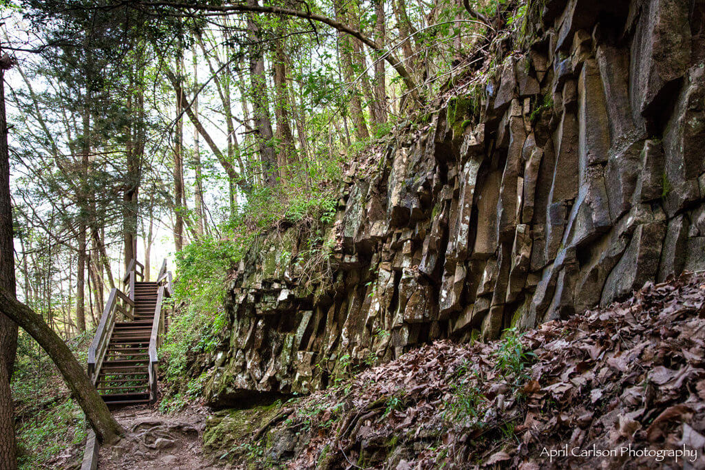 Visiting Cloudland Canyon State Park: Stairs on Trail