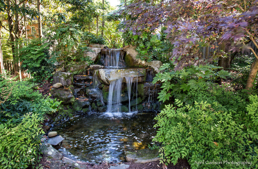 Gardens for Connoisseurs Tour 2017: Waterfall