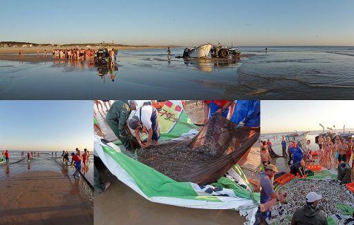 Seine_fishing_in_Portugal,_at_Praia_da_Saúde_beach,_Costa_da_Caparica_(1)