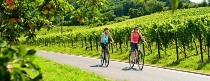 German Wine Route Trail