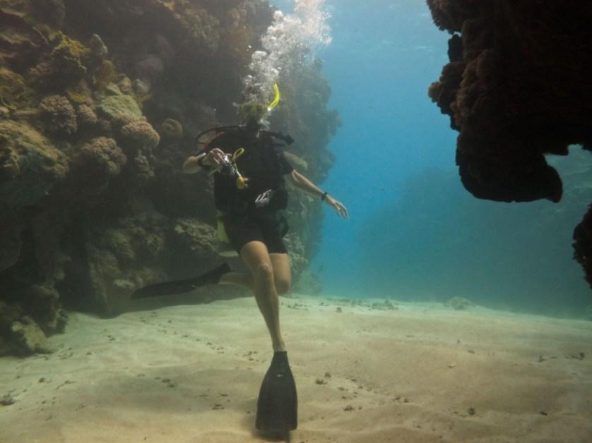 tuna reef