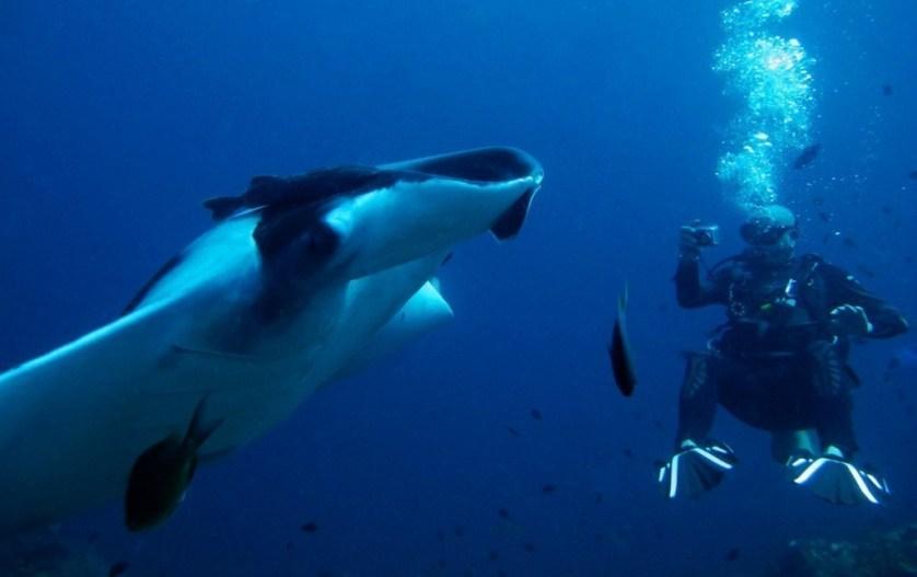 Khao Lak Scuba Diving