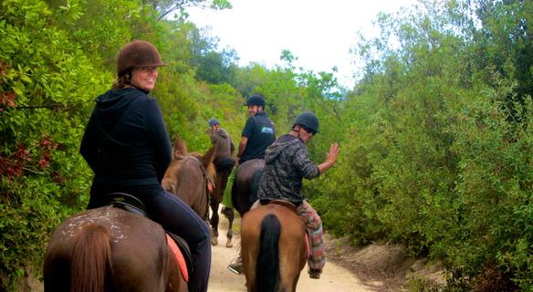 Horseback Riding Tour – Natural Park