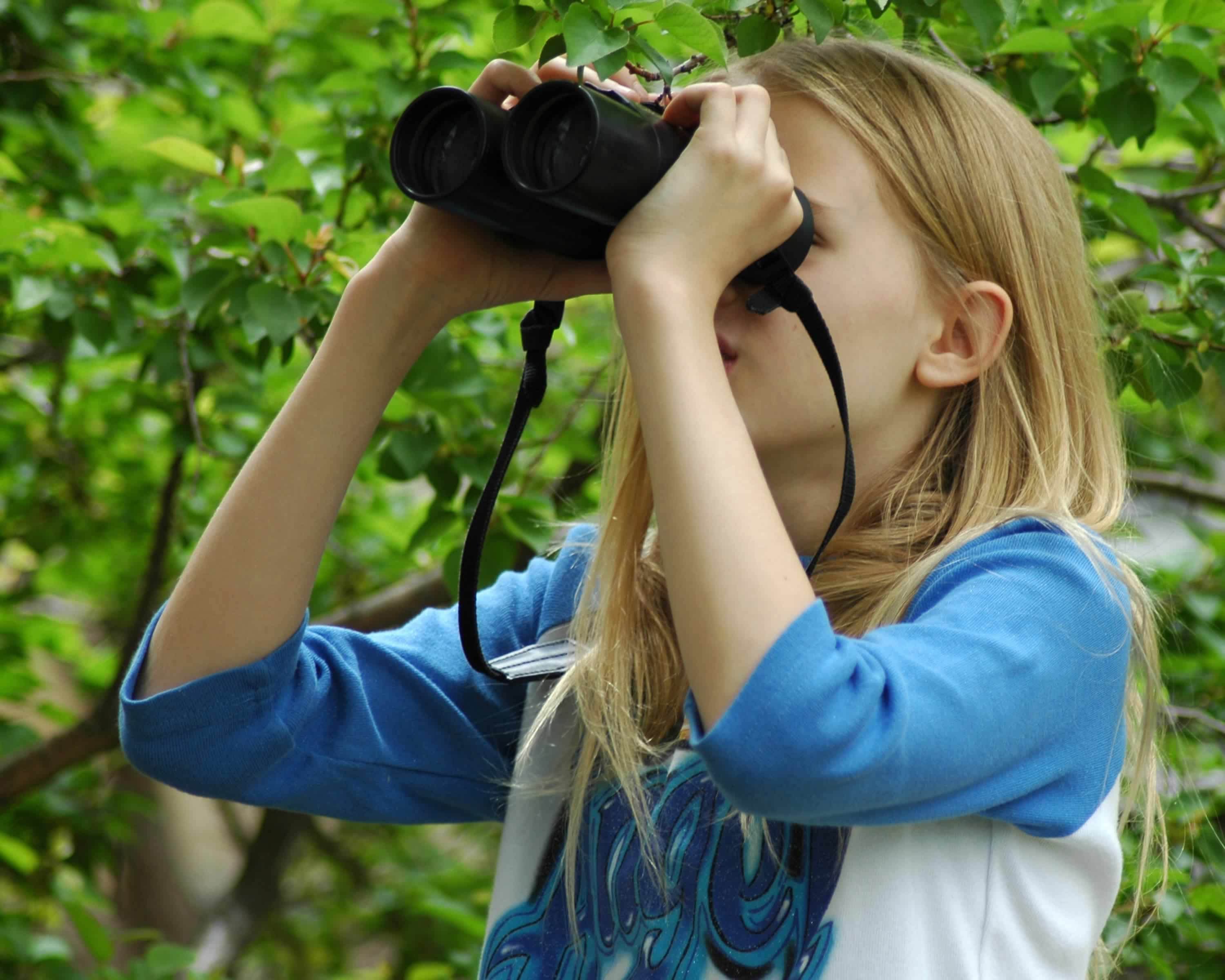 top birdwatching spots in the world