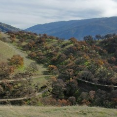 Best Places For Camping In California