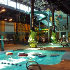 Best Water Parks In Albuquerque, New Mexico