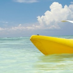 Aruba Kayaking Opportunities To Know About