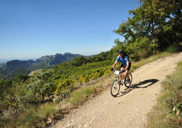 Biking Around Rhone Valley