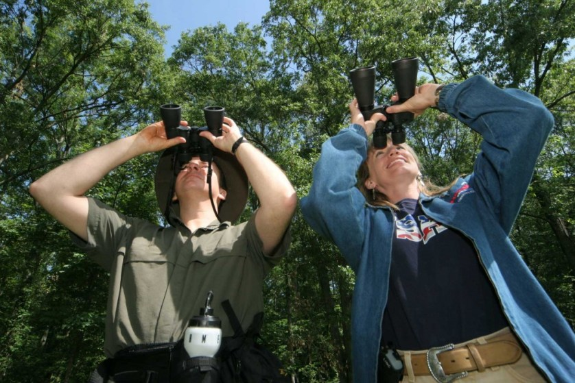 Bird Watching In Chile