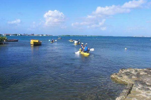Guided Kayaking Tours kayaking