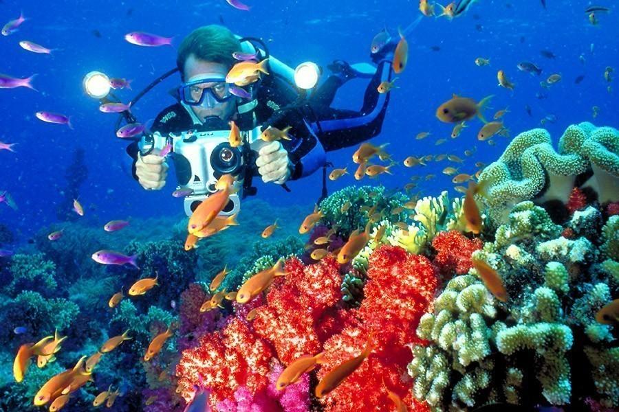 Scuba Diving fiji 02