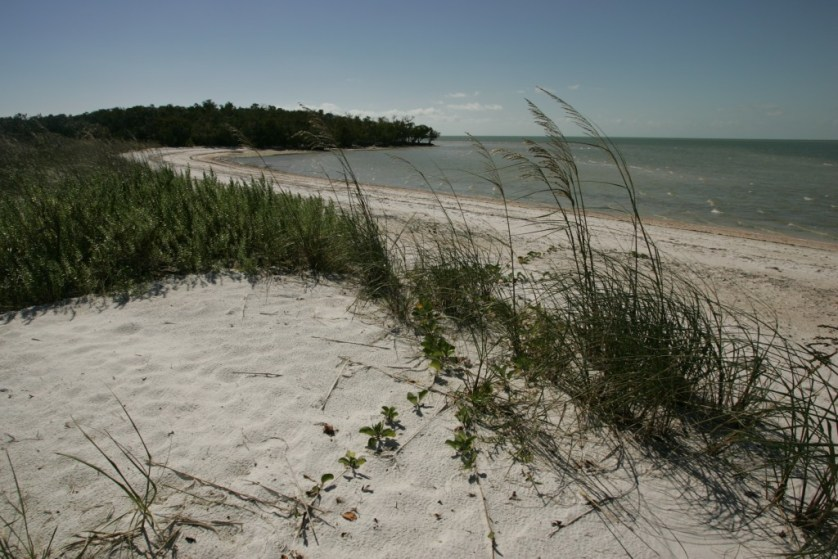 Beach Camping In 10,000 Islands – What To Expect