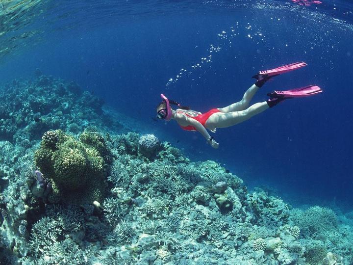 Snorkeling In Venezuela
