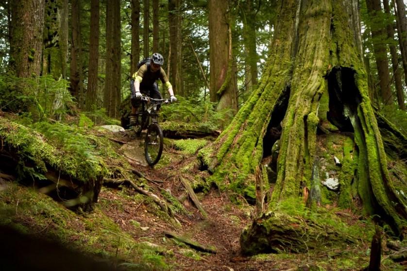 north shore mountain biking