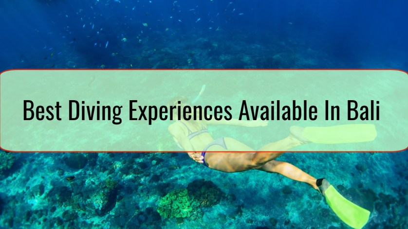 Best Diving Experiences Available In Bali