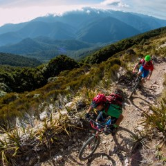 Mountain Biking In New Zealand – What Should You Know?