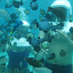 Scuba Diving Tips When Going To Boracay, Philippines