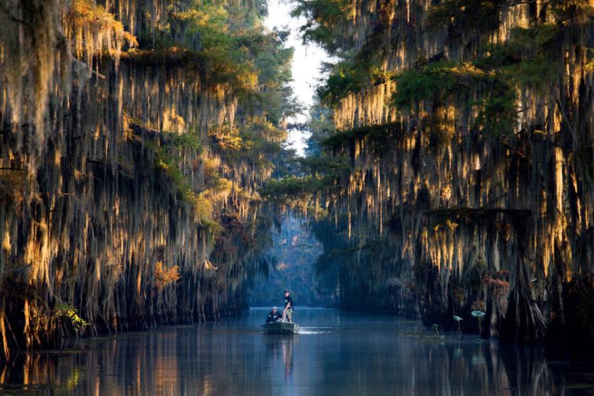Caddo Lake Kayaking, Canoeing And Boating