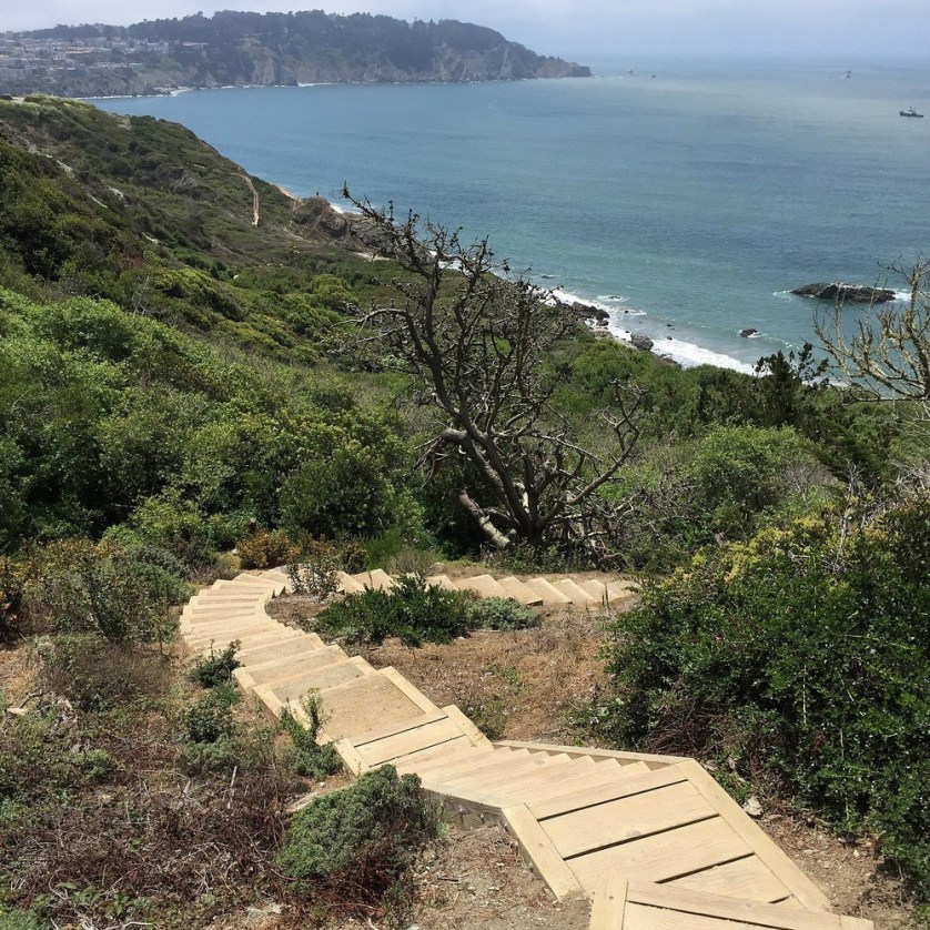 Hiking The Presidio, San Francisco