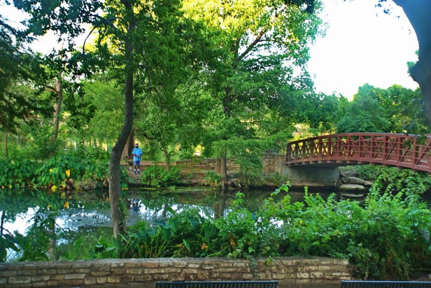 walking-hiking-and-other-outdoor-activities-in-zilker-park