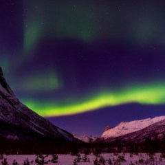Northern Norway's Best Adventure Travel