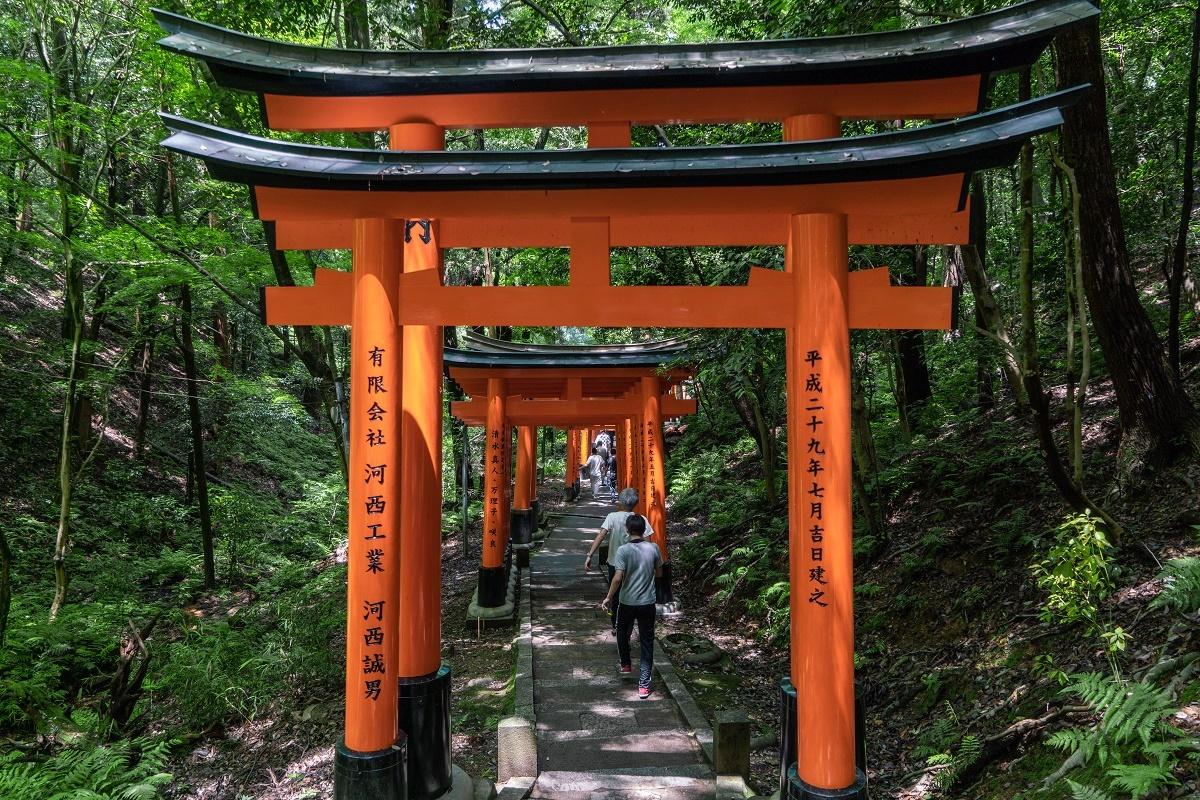 hiking trails around kyoto, japan