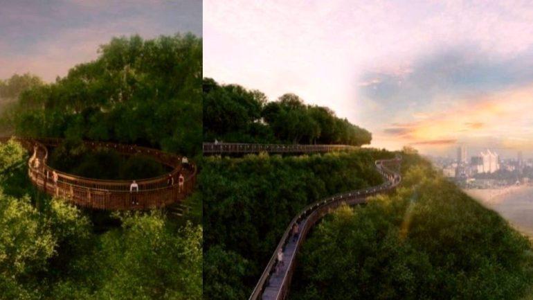 'Tree Prime Walkaway' to be arrange at Malabar Hills close to Mumbai