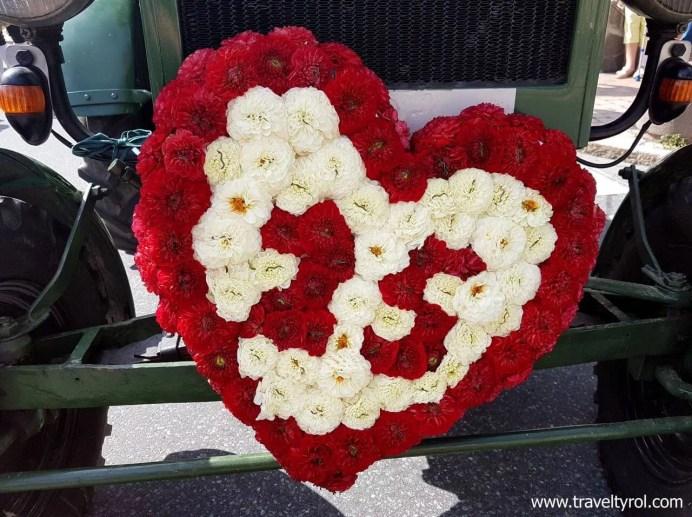 Blumencorso Kirchberg 25