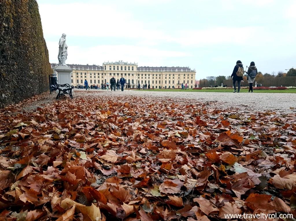 Schönbrunn in autumn. © Travel Tyrol