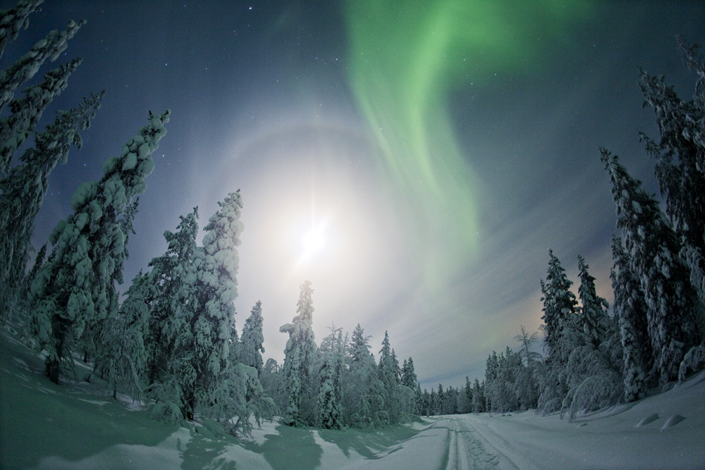 Northern Lights - Finland