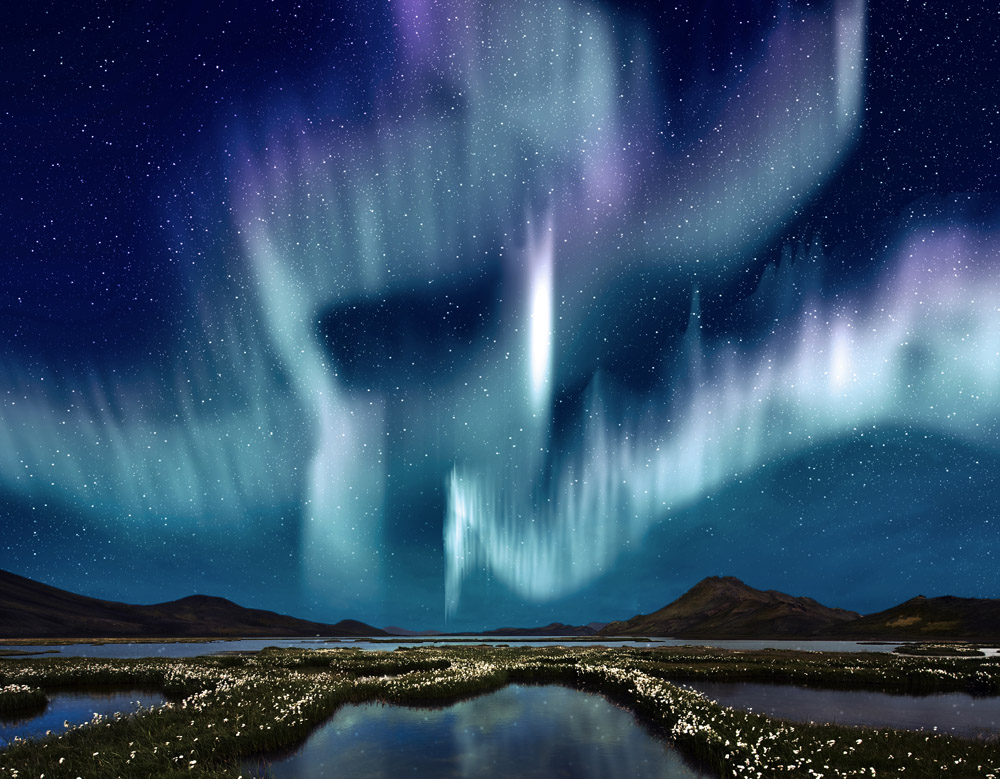 Northern Lights over the marsh landscape with wildflowers, Iceland © Corepics - source: www.depositphotos.com