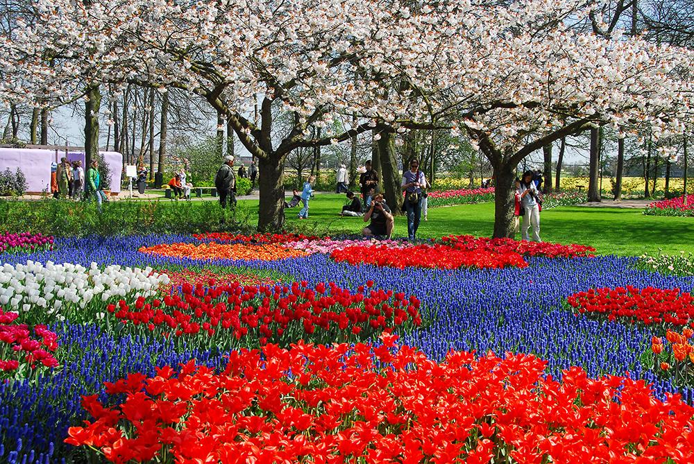Gardens of Europe Keukenhof