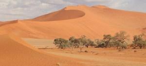 Extreme Travel - the desert