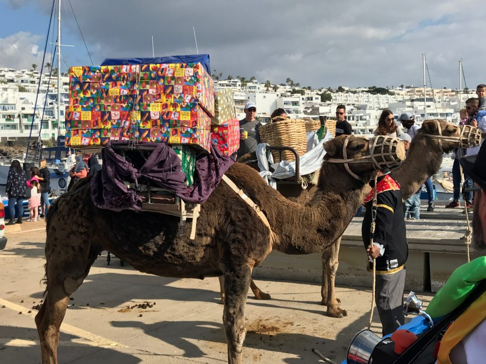 Camel with presents