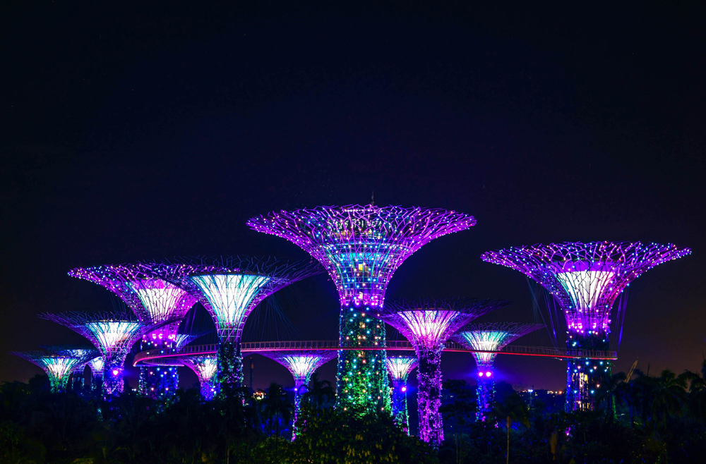 Supertree Grove in the Gardens by the Bay, Singapore.