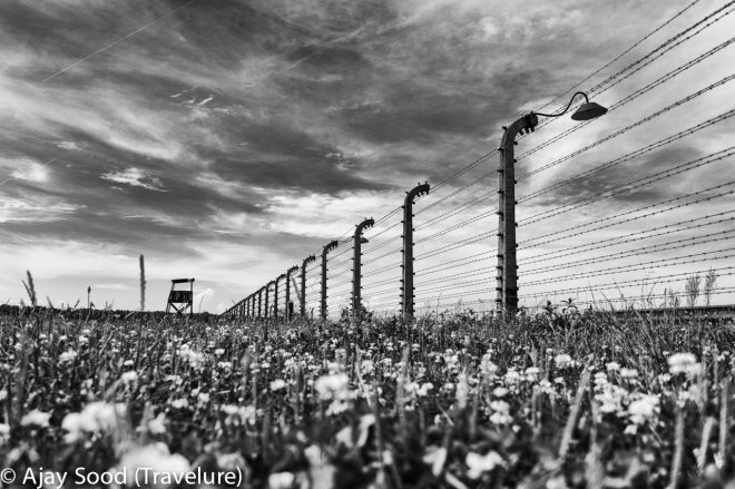 Haunting Photographs of Auschwitz Memorial Camp Guard Tower Barbed Wire Fence - WW-II Holocaust