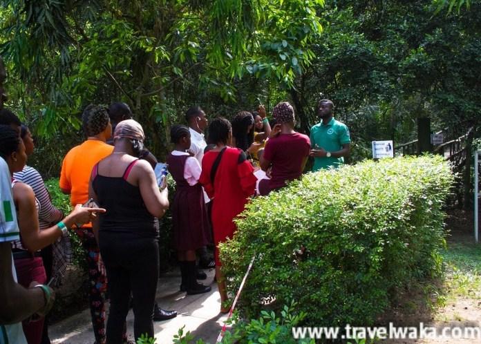 tour guide Lekki Conservation Centre