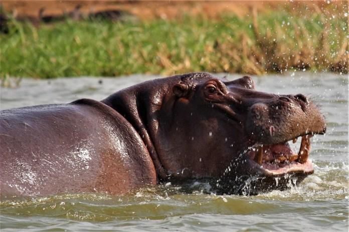 tourist attractions in Uganda