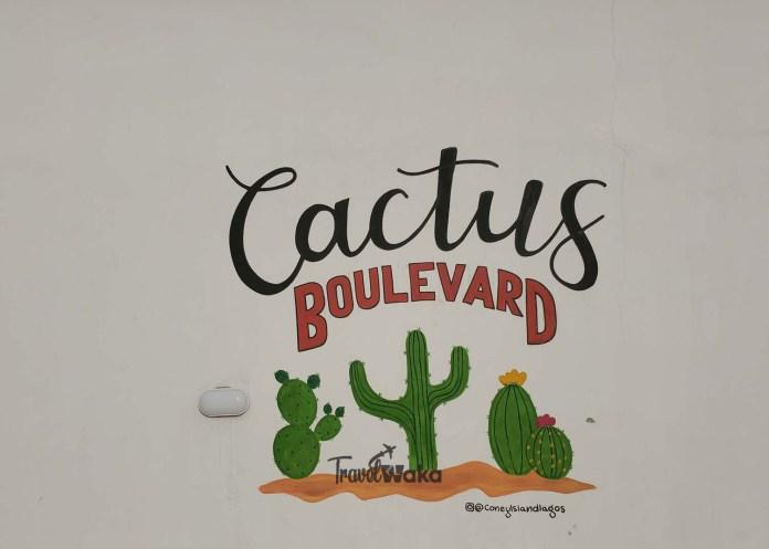 cactus boulevard