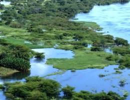 Barotse Floodplain
